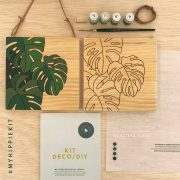 Kit pintar por numeros monstera